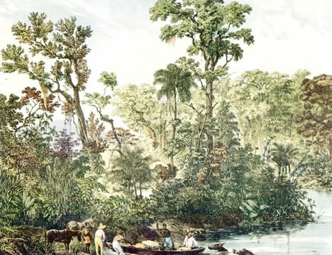 painting of the Rio Paraiba by Rugendas