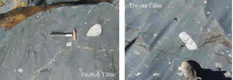 Tillite