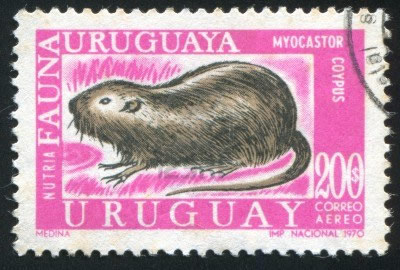 1970 stamp of coypu