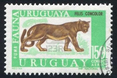 1970 stamp of puma