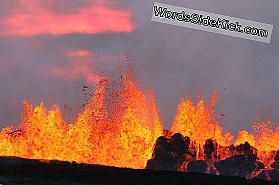 When it comes to beaches, rhode island offers something for every kind of beachgoer: Subglacial Eruption Begynner Pa Islands Bardarbunga Vulkan Oppdatert 2021 Planeten Jorden