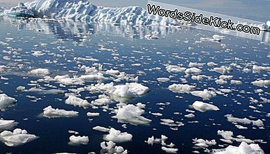 Антарктический Метеорит С Возрастом 4,5 Миллиарда Лет ...
