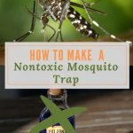 How to Make a Non-toxic Mosquito Trap