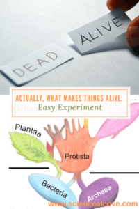 Actually, What Makes Things Alive- -Easy Experiment - http://sciencealcove.com/2016/09/what-makes-things-alive/