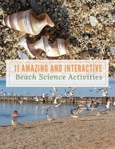 11 Amazing and Interactive Beach Science Activities - http://sciencealcove.com/2017/07/beach-science-activities/