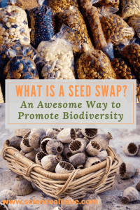 What is a Seed Swap? An Awesome Way to Promote Biodiversity-http://sciencealcove.com/2018/01/what-is-a-seed-swap-an-awesome-way-to-promote-biodiversity/