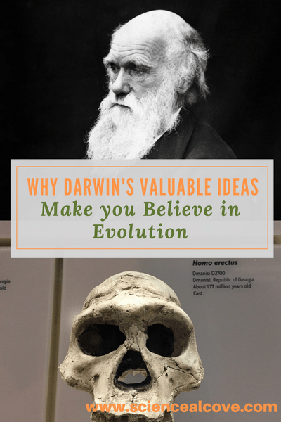 Why Darwin's Valuable Ideas Make you Believe in Evolution