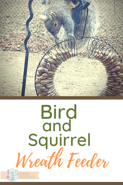 Whole Peanut Bird and Squirrel Wreath Feeder