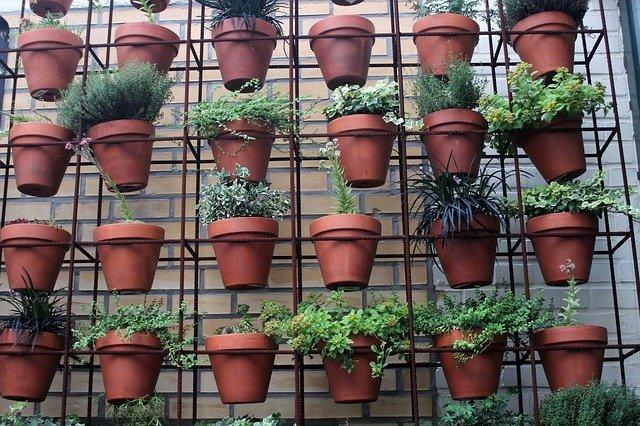 go green by creating a balcony vertical garden