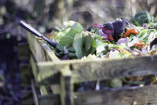 Maintain an eco-friendly lifestyle by composting.