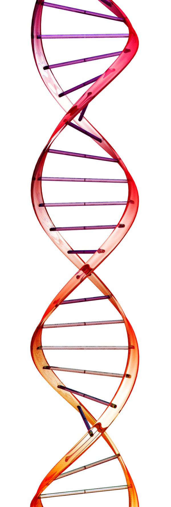 double helix – Science and Belief