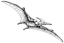 Pterodactyl By Pearson Scott Foresman [Public domain], via Wikimedia Commons