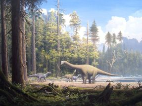 Europasaurus holgeri Scene 2 By Gerhard Boeggemann (File was sent by Gerhard Boeggemann. Gallery) [CC BY-SA 2.5], via Wikimedia Commons