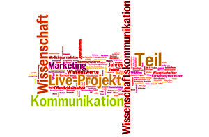 Wordle_Bilanz2012_klein
