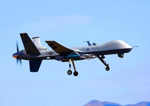 Drohnen und Wüstenheuschrecken - Ein langer Weg zur Anwendung. (Foto:Wikipedia)