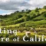 Celebrating the Nature of California