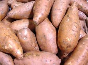 Image result for potato nigeria