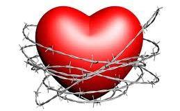 Cardiovascular health a problem in U.S.