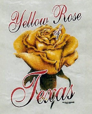 Rose torture: severe heat in Texas yields better varieties for research