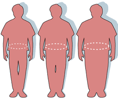 Missing protein explains link between obesity and diabetes
