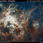 The image of 30 Doradus, a star-forming complex located in the heart of the Tarantula nebula, comprises one of the largest mosaics ever assembled from Hubble photos and includes observations taken by Hubble's Wide Field Camera 3 and Advanced Camera for Surveys. Hubble made the observations in October 2011. NASA and the Space Telescope Science Institute are releasing the image to celebrate Hubble's 22nd anniversary.