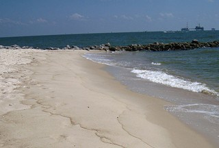 Oil from 2010 spill lingering in Gulf of Mexico