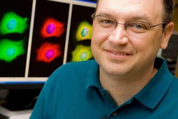 Stress-related protein speeds progression of Alzheimer's