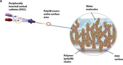 Creating a permanent bacteria barrier