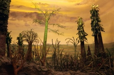 A possible cause of the end-Permian mass extinction: Acid rain