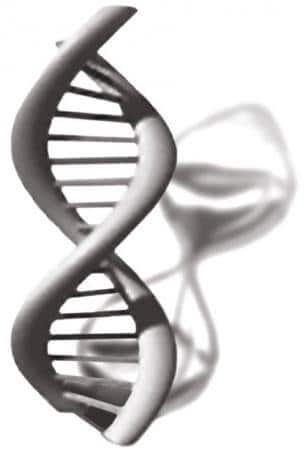 Parasitic DNA proliferates in aging tissues