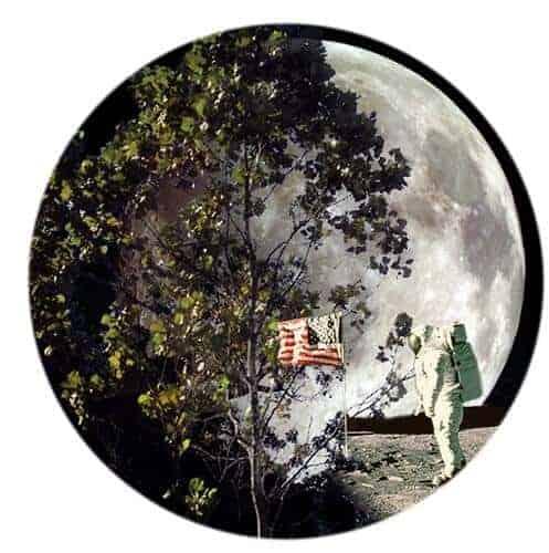 Where the Moon Trees Grow