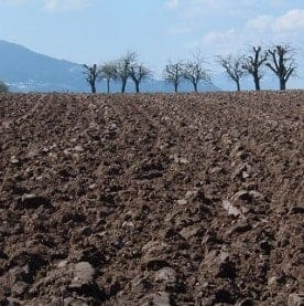 Loss of soil carbon due to climate change will be 'huge'
