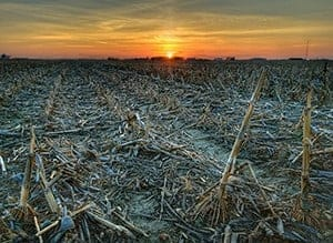 Warming Climate May Spread Drying to a Third of Earth