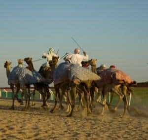 MERS-CoV infects four more in Saudi Arabia
