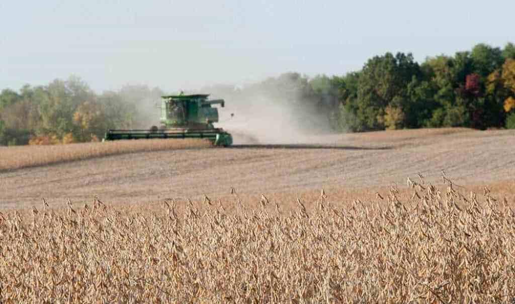 Worldwide, the nitrogen cycle is off