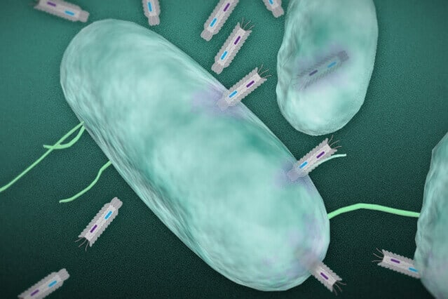 Researchers develop a new means of killing harmful bacteria