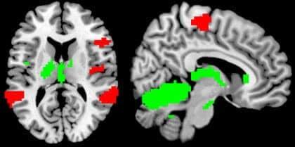 Self-Control Saps Memory