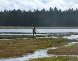 Study Shows Sea Level Rise to Threaten West Coast Tidal Wetlands Over the Next 100 Years