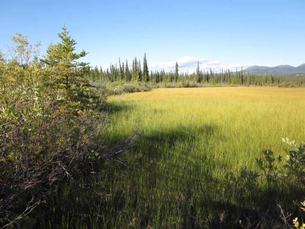 CO2 biggest player in thawing permafrost