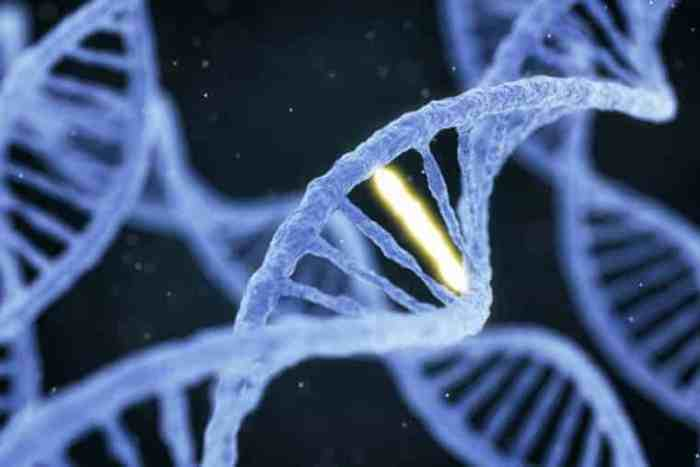 Scientists predict reading ability from DNA alone