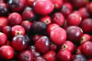 Cranberry disrupts harmful bacteria's ability to communicate, spread and become virulent