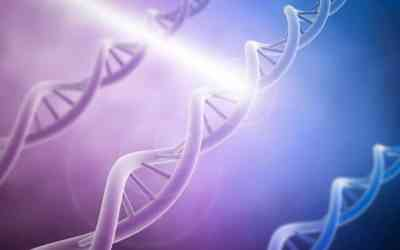 Using light to control genome editing