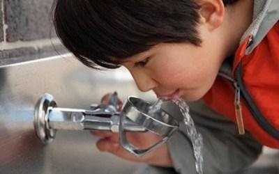 Mechanism identified through which lead may harm neural cells, children's neurodevelopment
