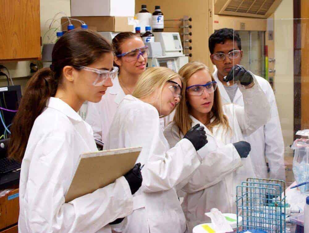 Engineers Develop First-Ever Capsule to Treat Hemophilia