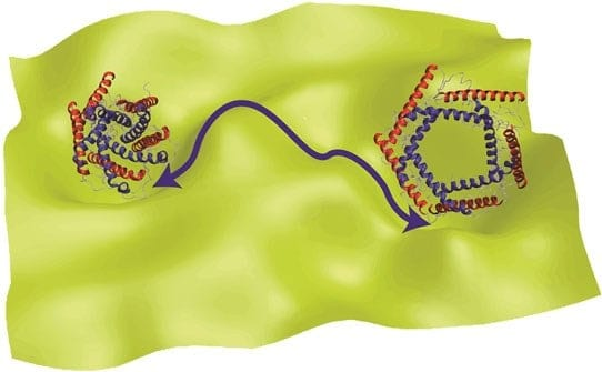 Chemist Develops New Theory for Explaining the Function of Proteins