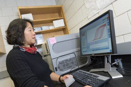 New Gene Expression Research Could Have Implications for Aging