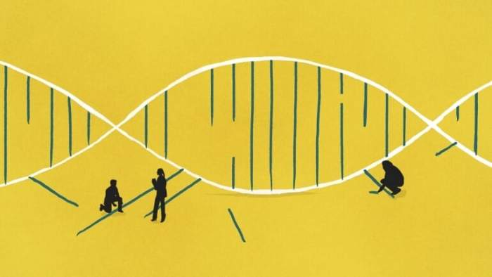 The Mysterious 98%: Scientists Look to Shine Light on Our Dark Genome