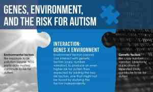 Increased risk for autism when genetic variation and air pollution meet