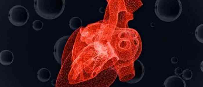 Study predicts heart cells' response to dwindling oxygen