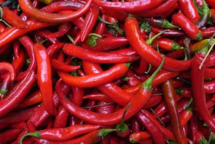 Chili pepper anti-obesity drug promising in animal trials